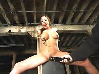 BDSM, Sasha Sparks,