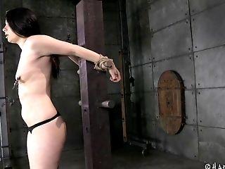 BDSM, Bondage, Fetish, Fuckdoll, Screaming, Submissive, Torture,