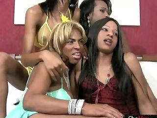 Negro, Orgy, Sexy, Transformista,